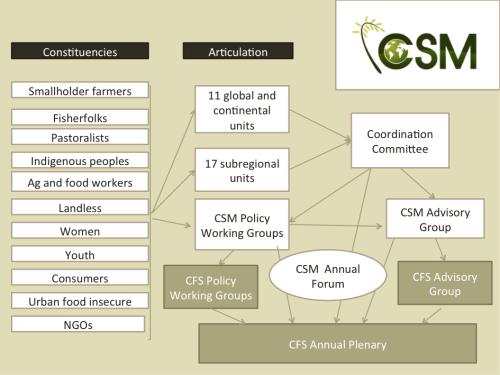 CSM Structure