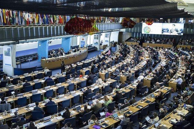 CFS Plenary  - FAO Copyright