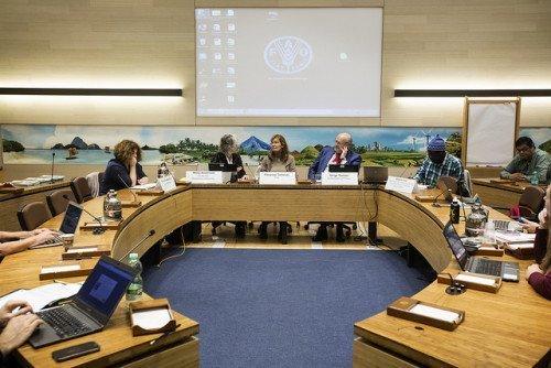 CSM Side Event- FAO Copyright