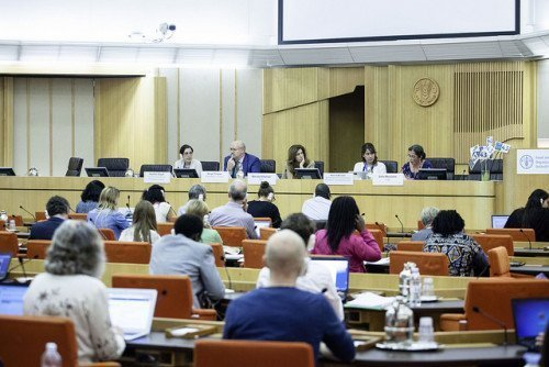 CSM Side Event- FAO Copyright