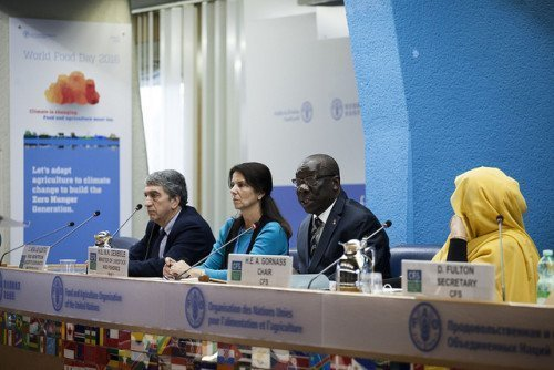 CFS Forum on Urbanisation and Rural Transformation - FAO Copyright