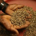 coffee-beans-1414100_1280