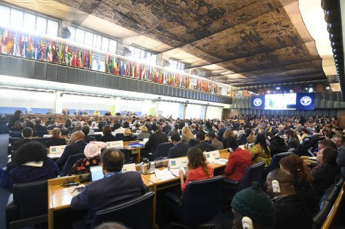 CFS 44 Plenary Session Pictures by FAO