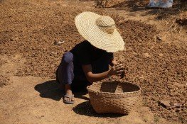myanmar-916560_1280