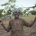farmer-2839078_1920