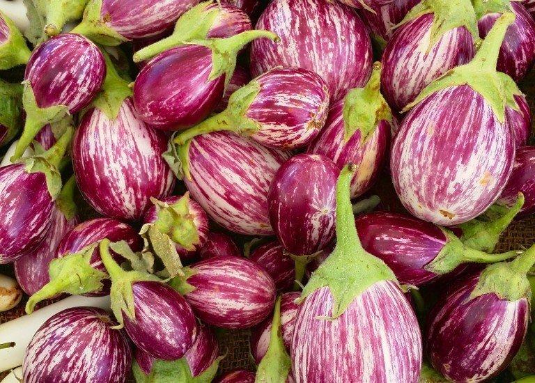 eggplant-1335809_1920
