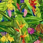 0b0785eb4d8fc130f96108e15bb189dc--tropical-plants-tropical-gardens