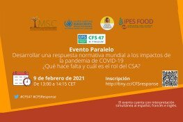Side-Event-9-February-768x550 ES WEB