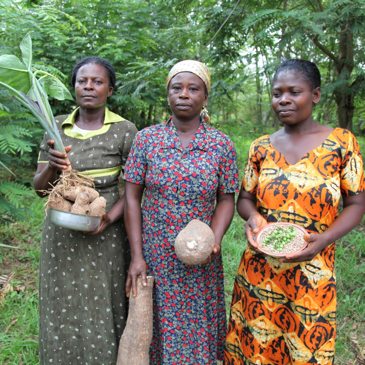 Global justice now women seeds