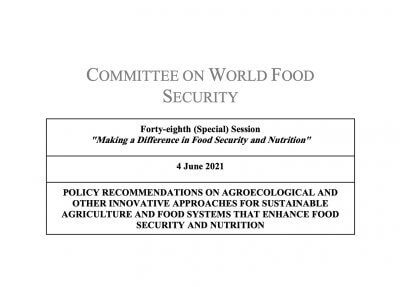 CSM Positioning on the CFS Policy Recommendations on agroecological and other innovative approaches